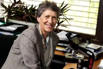 Imagem da notícia: Mulher da ciência 2012