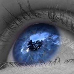 Imagem da notícia: Toxoplasmose e herpes podem prejudicar visão