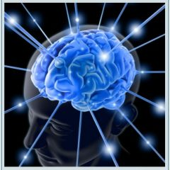Imagem da notícia: UBI acolhe III Simpósio Internacional de Neuromedicina