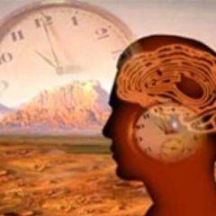 """Imagem da notícia: """"Tempo biológico"""" mais fácil de determinar"""