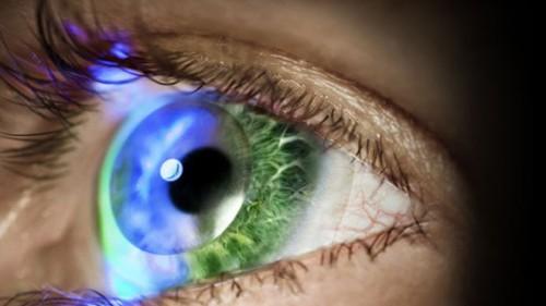 """Imagem da notícia: Conheça as lentes de contacto """"inteligentes"""""""