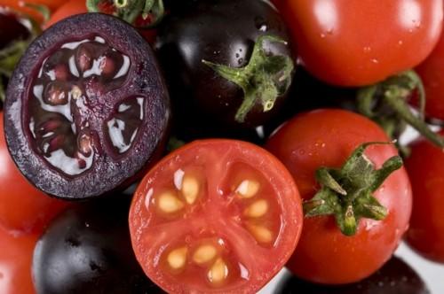 Imagem da notícia: Cancro pode ser travado com tomates roxos