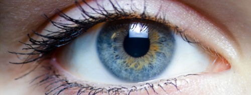 Imagem da notícia: Células estaminais podem ajudar a regenerar a córnea