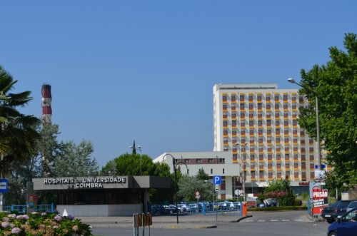 Imagem da notícia: Coimbra novamente o centro internacional de Oftalmologia