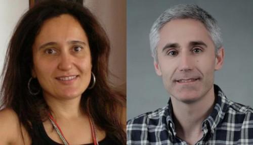 Imagem da notícia: Investigadores da FMUC distinguidos pela Sociedade Portuguesa de Diabetologia
