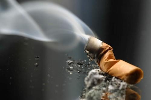 Imagem da notícia: Fumar poderá levar à cegueira