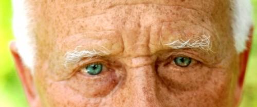 Imagem da notícia: Novo tratamento para a degeneração macular relacionada com a idade