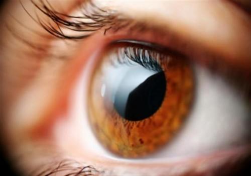 Imagem da notícia: Índia desenvolve método inovador para detetar glaucoma