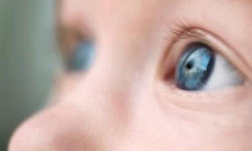 Imagem da notícia: Células estaminais podem regenerar tecido ocular em crianças com cataratas