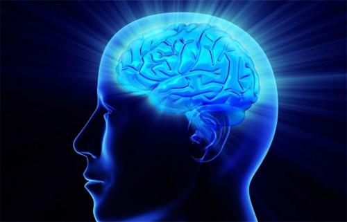 Imagem da notícia: Cientistas portugueses descobrem como produzir novos neurónios