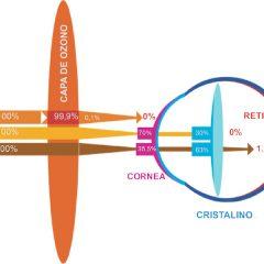 Imagem da notícia: Tratamento CNC UV: faça chuva ou faça sol!