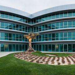 Imagem da notícia: Johnson & Johnson investe 5,5 milhões em Portugal