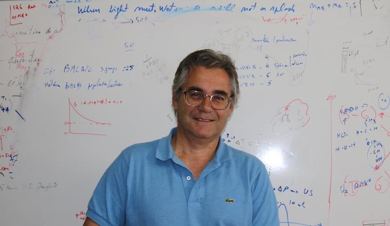 Imagem da notícia: Cientista da UC eleito presidente da IPA