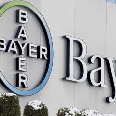 Imagem da notícia: Bayer anuncia ensaios de fase III com nova fórmula de aflibercept 8 mg
