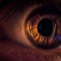 Imagem da notícia: Textura da retina pode alertar para doença de Alzheimer
