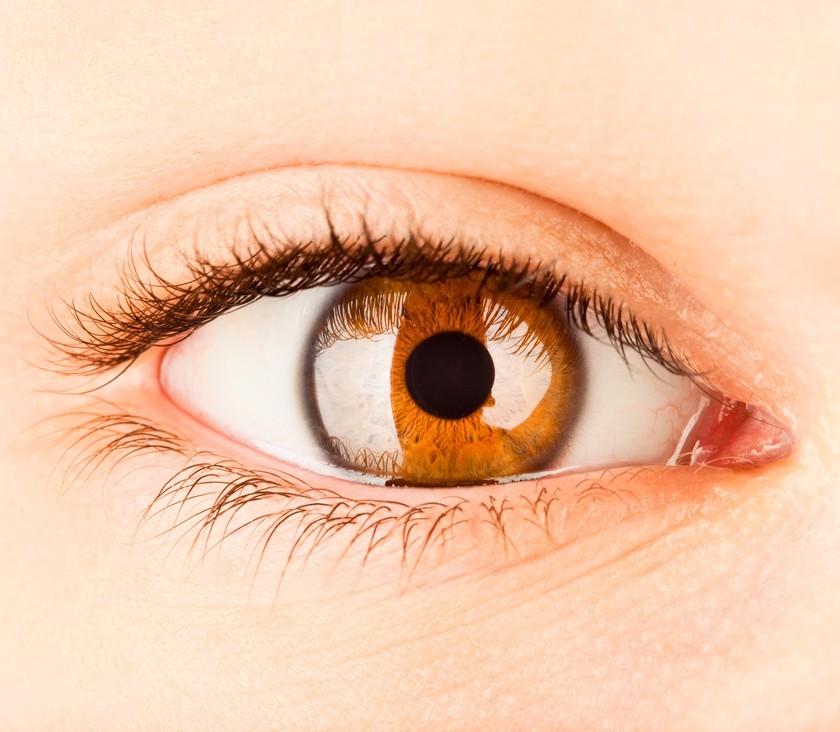 Imagem da notícia: Glaucoma revela risco hereditário em grupos étnicos
