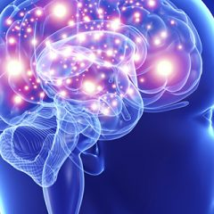 Imagem da notícia: 57,4% dos doentes com Covid-19 desenvolveram algum sintoma neurológico