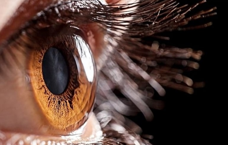 Imagem da notícia: A córnea poderá ser resistente ao vírus que causa Covid-19?