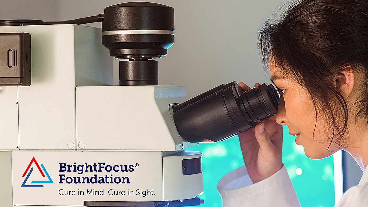Imagem da notícia: BrightFocus Foundation: investimento no estudo de Alzheimer e Doenças da Visão