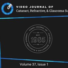 Imagem da notícia: Sociedade Europeia de Oftalmologia: 1ª edição do Video Journal of Cataract, Refractive, & Glaucoma Surgery 2021 já está disponível