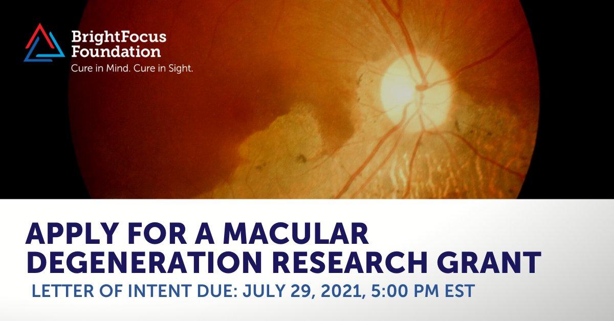 """Imagem da notícia: BrightFocus: inscrições abertas para bolsas de pesquisa em """"degeneração macular"""""""