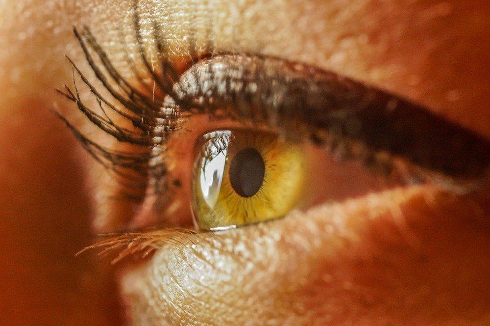 Imagem da notícia: Oncologia Ocular e Saúde Pública discutidas em webinar